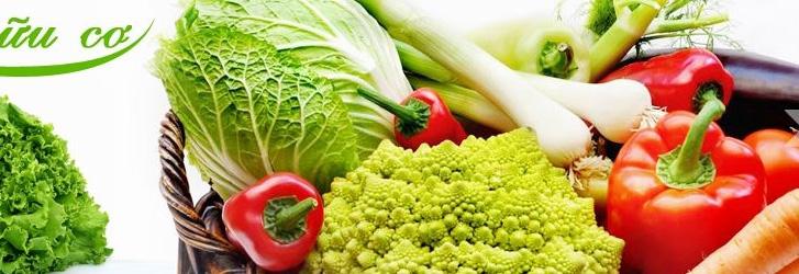 Để thực phẩm bẩn, thực phẩm không rõ nguồn gốc không còn đất sống
