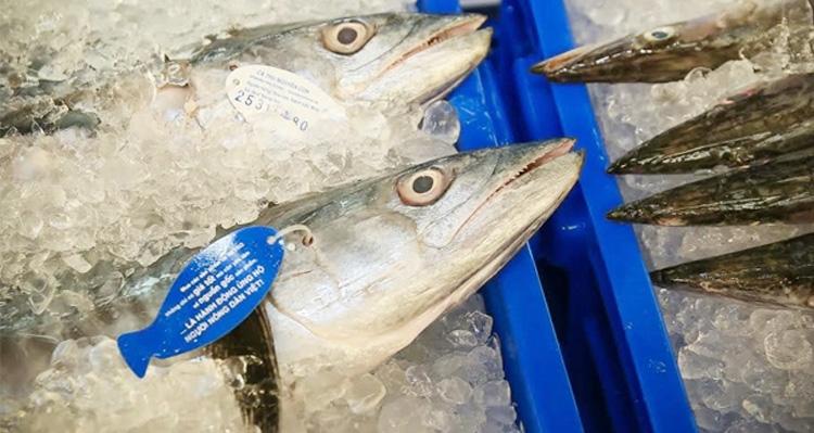 Đăng ký vệ sinh an toàn thực phẩm cho cơ sở chế biến thủy sản